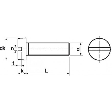Parafuso cabeça queijo fenda (Nylon 6.6) - DIN 84 - ISO 1207